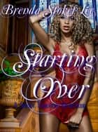Starting Over, An Erotic Romance Quickie ebook by Brenda Stokes Lee