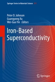 Iron-Based Superconductivity ebook by
