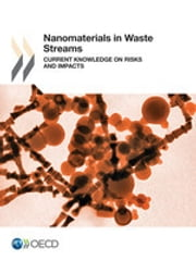 Nanomaterials in Waste Streams: Current Knowledge on Risks and Impacts ebook by