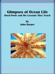 Glimpses of Ocean Life: Rock-Pools and the Lessons They Teach ebook by John Harper