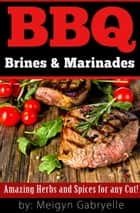 BBQ Brines & Marinades! Amazing Herbs and Spices for any Cut! ebook by Meigyn Gabryelle