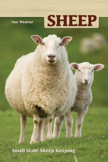 Sheep - Small-Scale Sheep Keeping For Pleasure And Profit ebook by Sue Weaver