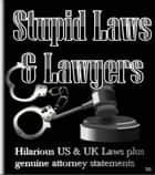 Stupid Laws & Lawyers - Hilarious US & UK Laws plus genuine attorney statements ebook by Janette Soleman
