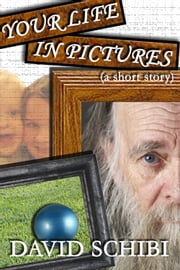 Your Life In Pictures ebook by David Schibi