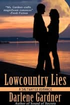 Lowcountry Lies (A Saltwater Romance) ebook by Darlene Gardner