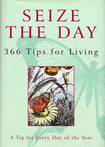 Seize The Day - 366 Tips for Living ebook by Nicholas Albery