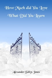 How Much Did You Love - What Did You Learn ebook by Alexander Soltys Jones