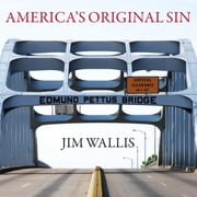 America's Original Sin - Racism, White Privilege, and the Bridge to a New America audiobook by Jim Wallis