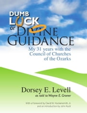 Dumb Luck or Divine Guidance: My 31 Years with the Council of Churches of the Ozarks ebook by Dorsey E. Levell