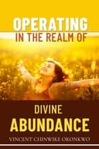 Operating in the Realm of Divine Abundance ebook by Vincent Chinwike Okonkwo