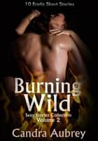 Burning Wild - 10 Erotic Short Stories ebook by Candra Aubrey