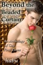 Beyond the Beaded Curtain - An Anthology of Gay First Times ebook by habu