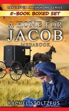 A Lancaster Home for Jacob 5-Book Boxed Set Bundle - A Lancaster Home for Jacob Boxed Sets, #1 ekitaplar by Rachel Stoltzfus