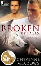 Broken Bridges ebook by Cheyenne Meadows