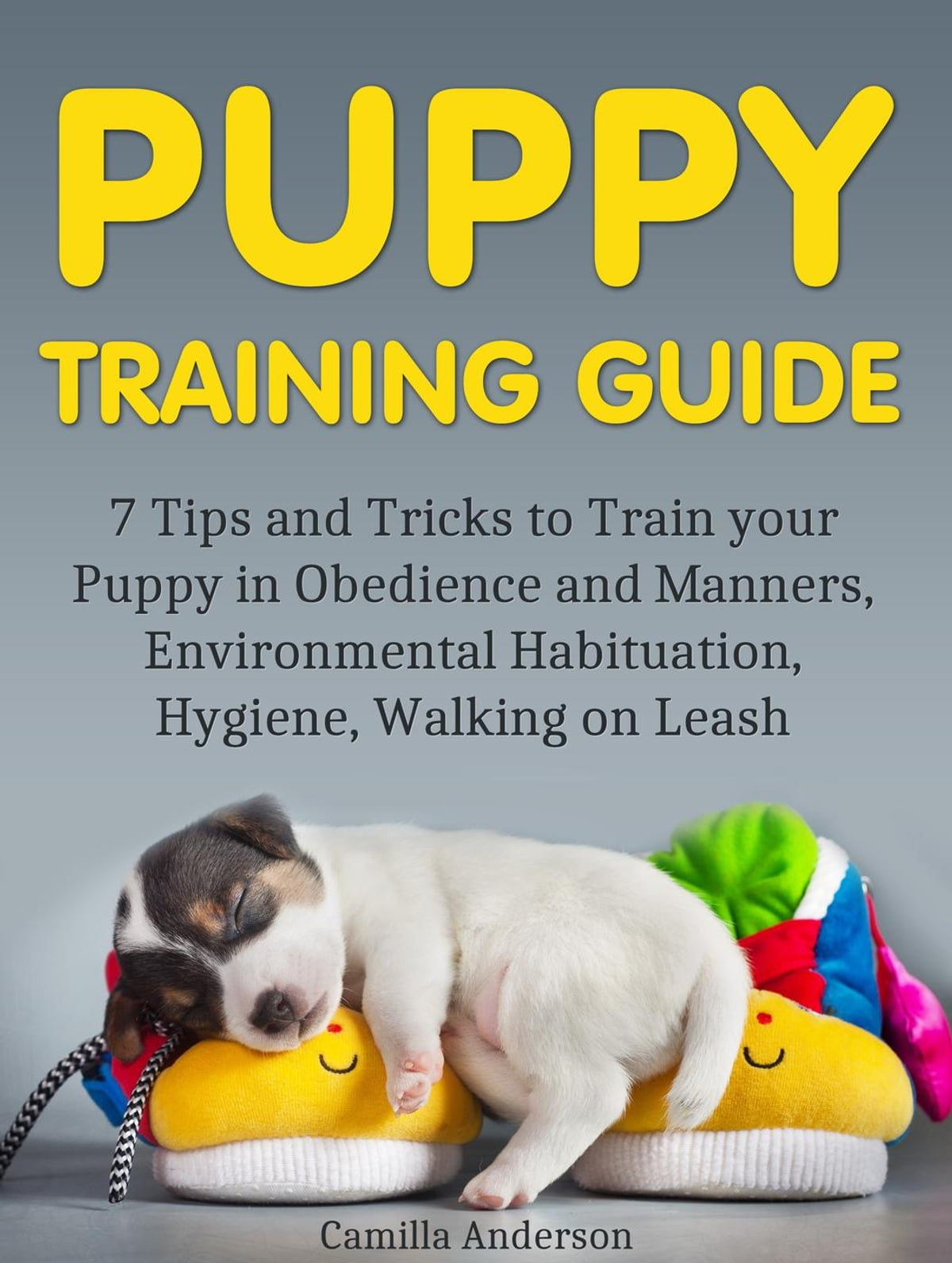 Puppy Training Guide 7 Tips And Tricks To Train Your Puppy In Obedience And Manners Environmental Habituation Hygiene Walking On Leash Ebook By Camilla Anderson 9781386427162 Rakuten Kobo United States