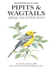 Pipits and Wagtails of Europe, Asia and North America ebook by Krister Mild, Per Alstrom, Bill Zetterstrom,...