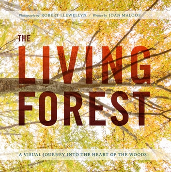 The Living Forest - A Visual Journey Into the Heart of the Woods ebook by Robert Llewellyn,Joan Maloof