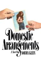 Domestic Arrangements - A Novel ebook by Norma Klein