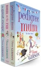 Fiona Gibson 3 Book Bundle ebook by Fiona Gibson