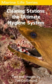 Cleaning Stations: the Ultimate Hygiene System ebook by Tim Grollimund