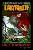 Labyrinth ebook by Bill Pronzini