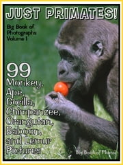 99 Pictures: Just Primate Photos! Big Book of Monkey, Ape, Gorilla, Chimpanzee, Orangutan, Baboon, and Lemur Photographs, Vol. 1 ebook by Big Book of Photos