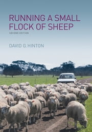 Running a Small Flock of Sheep ebook by David G Hinton