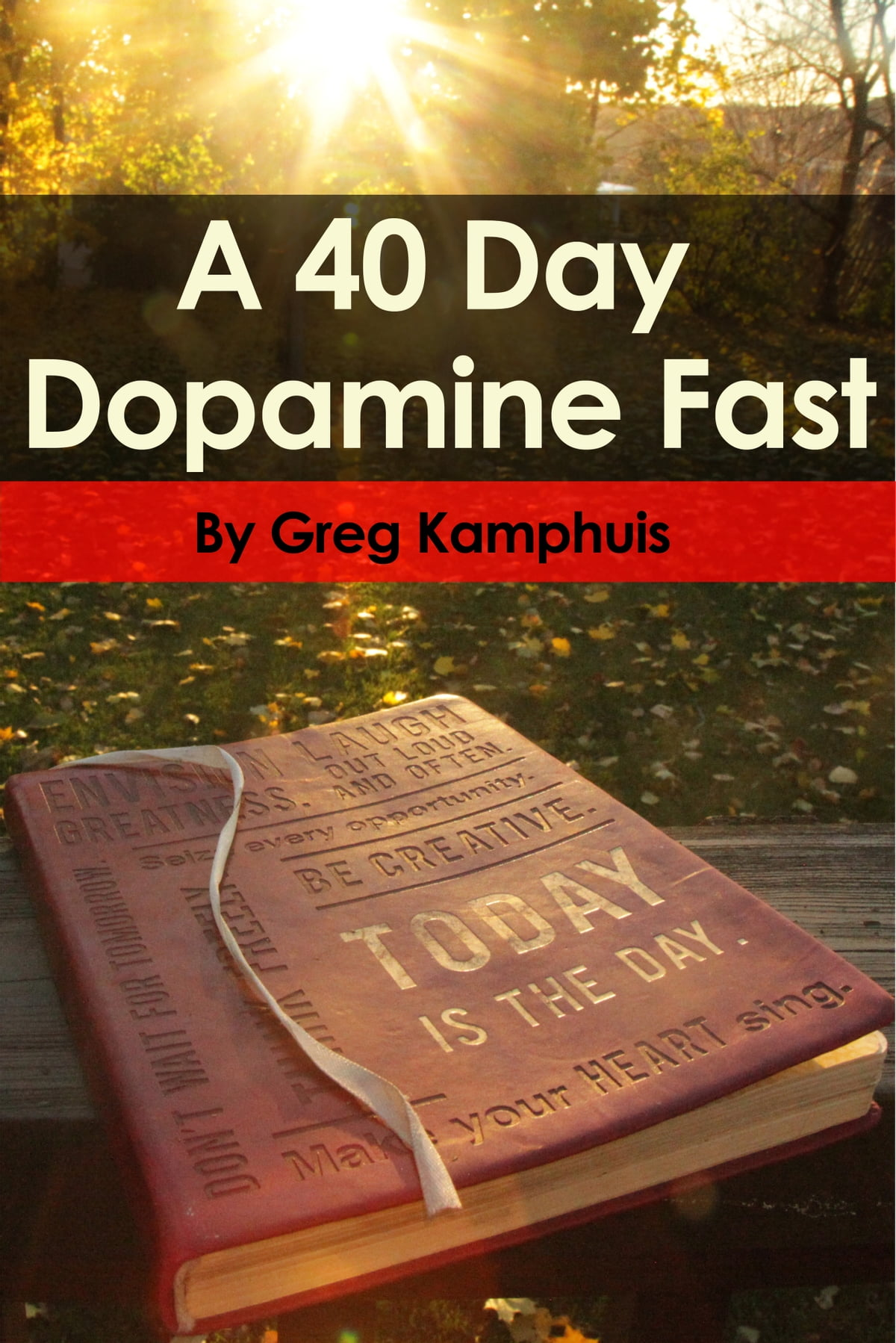 The 40 Day Dopamine Fast eBook by Greg Kamphuis