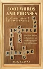1,001 Words and Phrases You Never Knew You Didn't Know - Hopperdozer, Hoecake, Ear Trumpet, Dort, and Other Nearly Forgotten Terms and Expressions ebook by W. R. Runyan