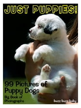99 Pictures: Just Puppies Photos! Big Book of Puppy Dog Photographs Vol. 1 ebook by Big Book of Photos