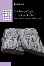 The Sense of Sight in Rabbinic Culture - Jewish Ways of Seeing in Late Antiquity ebook by Rachel Neis