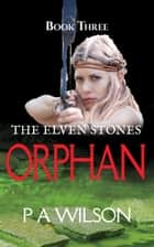 The Elven Stones Orphan ebook by P A Wilson