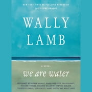 We Are Water - A Novel audiobook by Wally Lamb