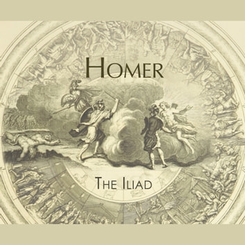 the importance of helen in the iliad a poem by homer Homer's epic poem the iliad contains little to no introduction, so it must be assumed that the story  helen, the wife of a greek king, menelaos.