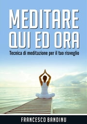 Meditare qui ed ora ebook by Francesco Bandinu
