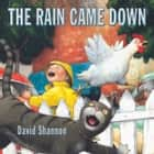 The Rain Came Down audiobook by David Shannon