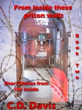 From Inside These Prison Walls: Book Two, Short Stories ebook by C.D. Davis