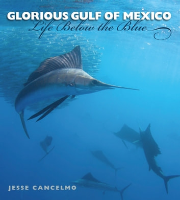 Glorious Gulf of Mexico - Life Below the Blue ebook by Jesse Cancelmo
