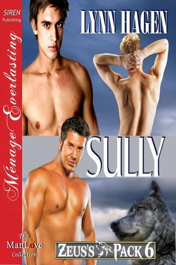 Sully ebook by Lynn Hagen