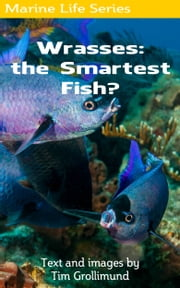 Wrasses: the Smartest Fish? ebook by Tim Grollimund
