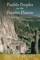 Pueblo Peoples on the Pajarito Plateau - Archaeology and Efficiency ebook by David E. Stuart