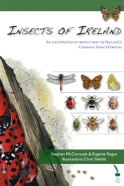 Insects of Ireland: An illustrated introduction to Ireland's common insect groups ebook by Stephen McCormack,Eugenie Regan