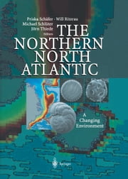 The Northern North Atlantic - A Changing Environment ebook by