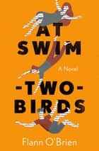 At Swim-Two-Birds - A Novel ebook by