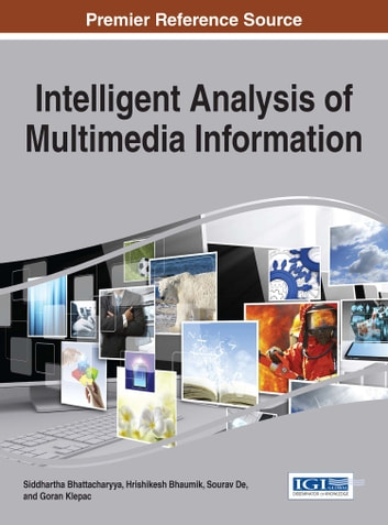 an analysis of multimedia