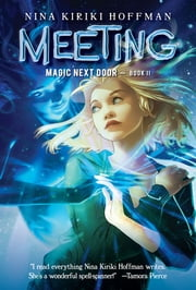 Meeting ebook by Nina Kiriki Hoffman