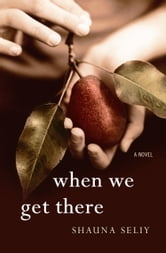 When We Get There - A Novel ebook by Shauna Seliy