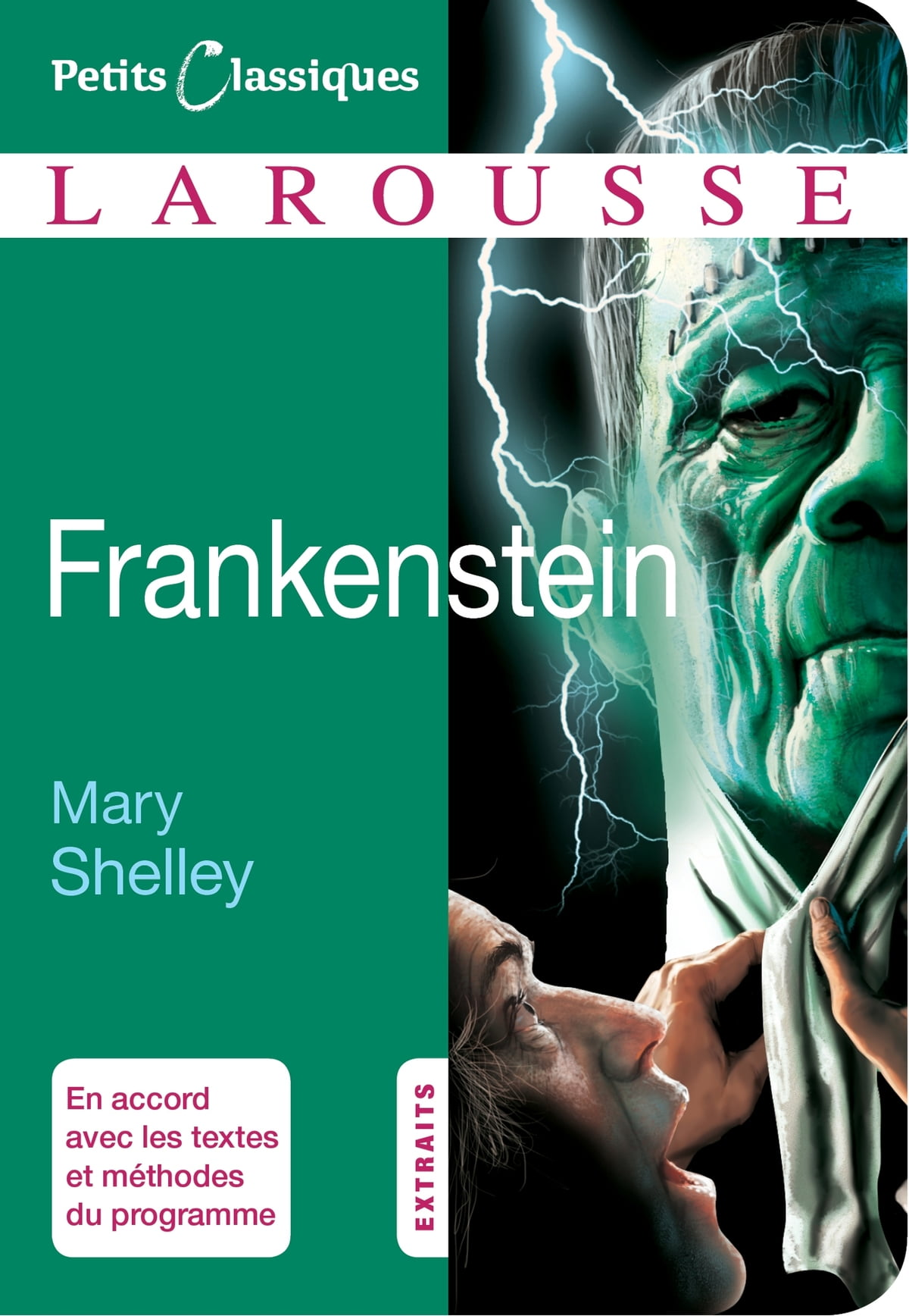 thesis of frankenstein by mary shelley This is a list of works by mary shelley (30 august 1797 - 1 february 1851), the british novelist, short story writer, dramatist, essayist, biographer, and travel writer, best known for her gothic novel frankenstein: or, the modern prometheus (1818.
