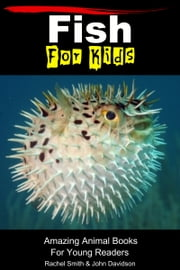 Fish For Kids: Amazing Animal Books For Young Readers ebook by Rachel Smith,John Davidson