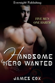 Handsome Hero Wanted ebook by James Cox